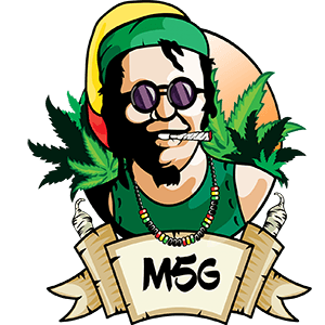Logo Ufficiale M5G Sponsor M5G movimento 5 grammi