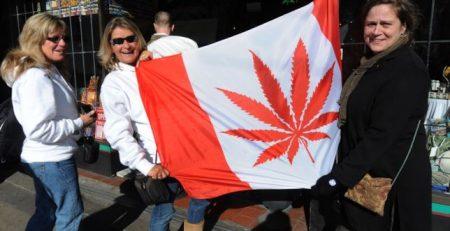 alcuni manifestanti per la legalizzazione della cannabis in canada maxw 644 450x231 M5G movimento 5 grammi